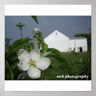 042 (2), fotografia do mrk poster