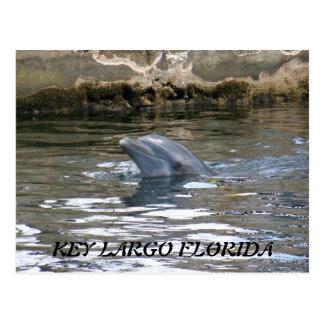 100_8578, LARGO CHAVE FLORIDA CARTÃO POSTAL
