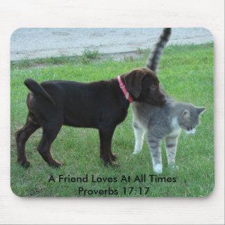 17:17 dos provérbio, um amigo ama em… mousepad