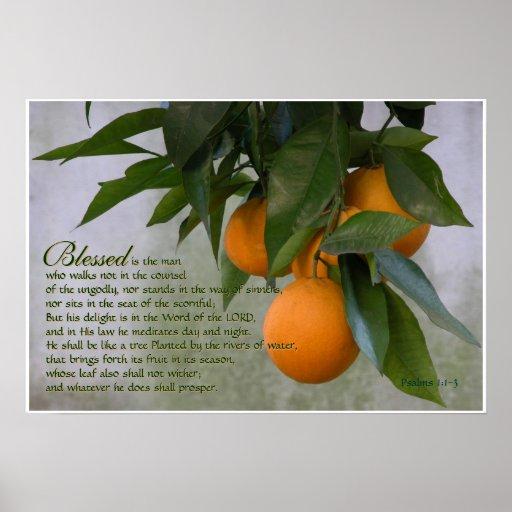 1:1 dos salmos - impressão de 3 escrituras