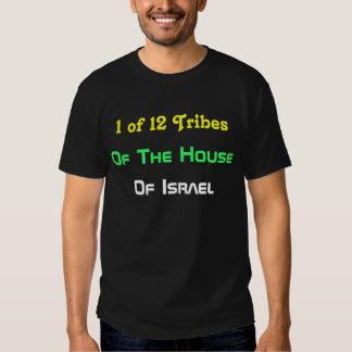 1 de 12 tribos - da casa de Israel T Camisetas