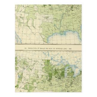 50 cevada 1890 cartão postal