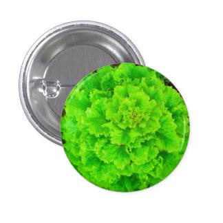 A alface seja botão bóton redondo 2.54cm