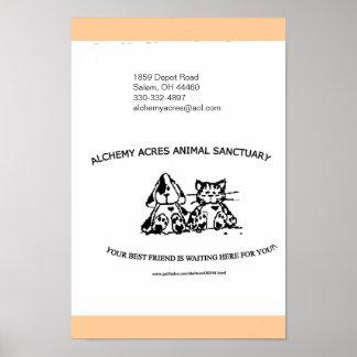 A Alquimia Acres Animal Santuário Inc. Posters