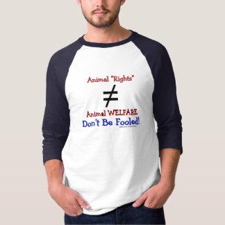 A AR não é igual ao AW T-shirt