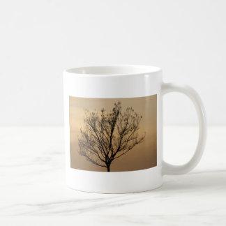 A árvore canecas