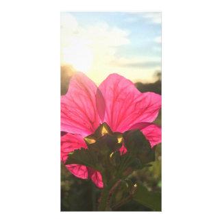 a beleza das flores cartão com foto