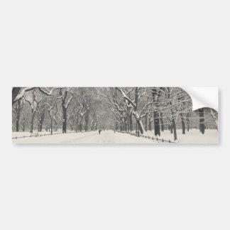 A caminhada do poeta - inverno do Central Park Adesivo Para Carro
