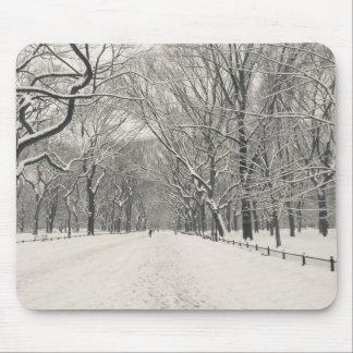 A caminhada do poeta - inverno do Central Park Mouse Pad