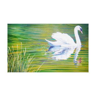 A cisne da natação esticou o impressão das canvas