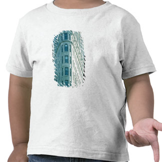 A construção de Flatiron (foto) 2 Tshirts