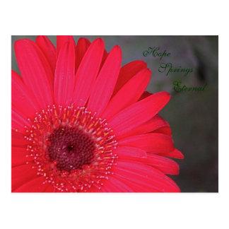 A esperança salta cartão eterno cartão postal