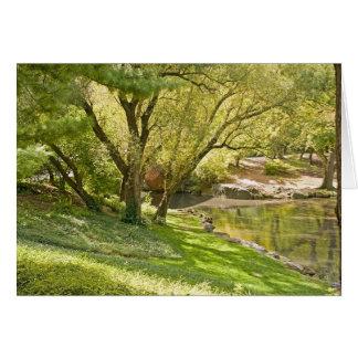 A lagoa - Central Park NYC Cartão Comemorativo