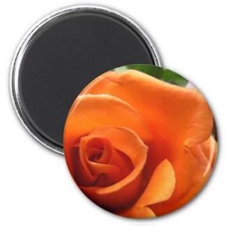 A laranja aumentou ímã redondo 5.08cm
