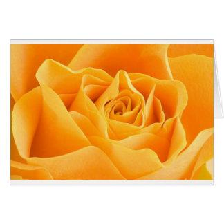 A laranja elegante aumentou cartão comemorativo