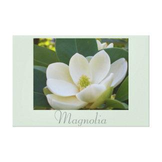 A magnólia branca floresce a fotografia 2 da impressão de canvas esticadas