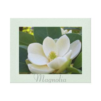 A magnólia branca floresce a fotografia da impressão em tela