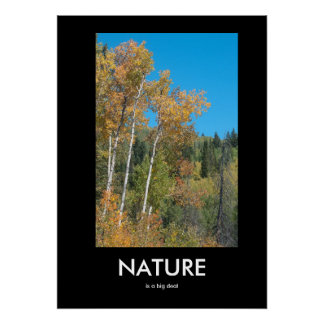 A natureza é um poster inspirado da grande coisa pôster