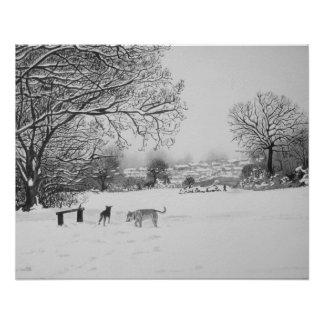 A paisagem da cena da neve do inverno com árvores póster
