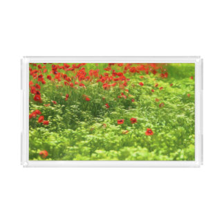 A papoila maravilhosa floresce V - Wundervolle Bandeja De Acrílico