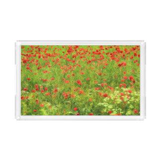 A papoila maravilhosa floresce VII - Wundervolle Bandeja De Acrílico