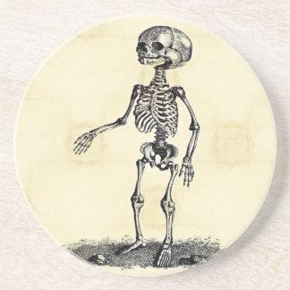 A porta copos de esqueleto da criança