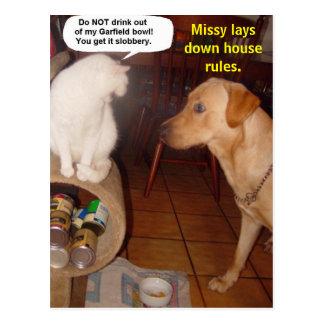 A senhorita estabelece regras da casa cartão postal