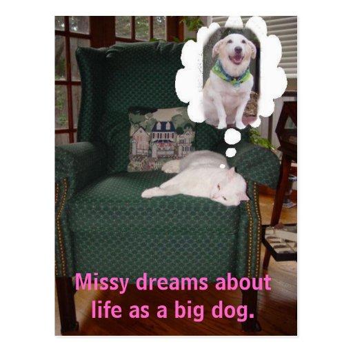 A senhorita sonha sobre a vida como um cão grande cartao postal