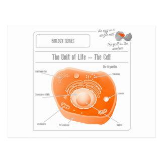 A série da biologia celular cartão postal