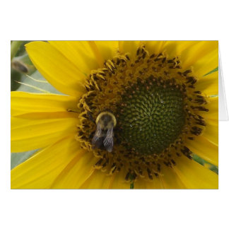 abelha no girassol cartão comemorativo