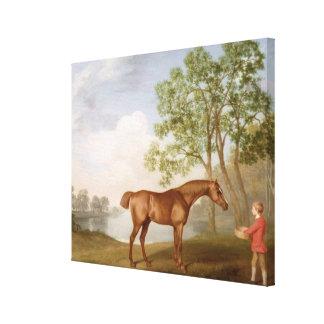 Abóbora com um Estável-Rapaz, 1774 (óleo no painel Impressão Em Canvas