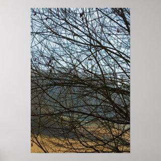 Abstract Natureza Poster
