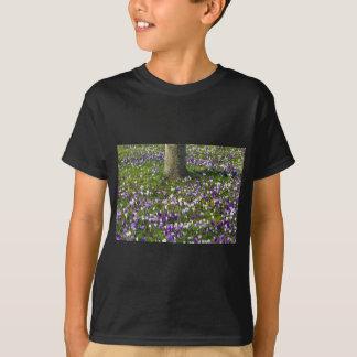 Açafrões do campo de flores na grama do primavera t-shirt