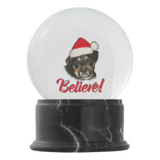 Acredite! no cão de estimação engraçado do Aussie Globo De Neve