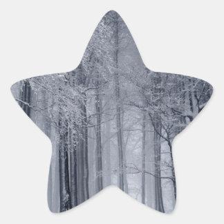 Adesito Estrela Cena do inverno