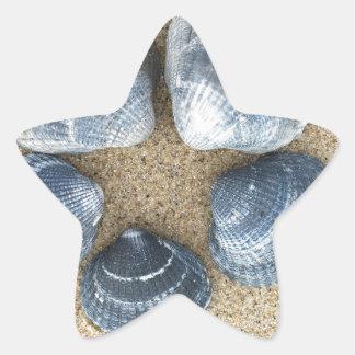 Adesito Estrela Escudos azuis