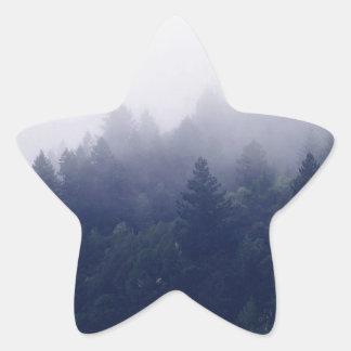 Adesito Estrela Névoa da floresta