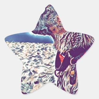 Adesito Estrela Opal o vagabundo Heeler da praia