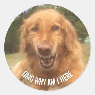 Adesivo Botão de sorriso do cão engraçado do golden