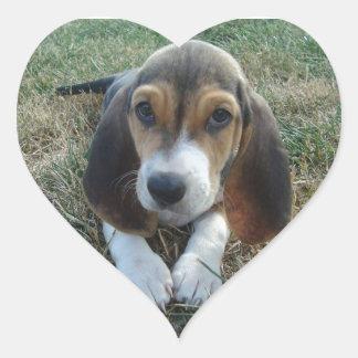 Adesivo Coração Cão de filhote de cachorro de Artésien Normand do