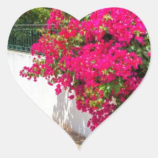 Adesivo Coração Flores vermelhas de bougainville que florescem em