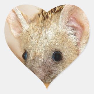 Adesivo Coração ouriço Longo-orelhudo