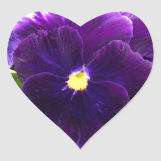Adesivo Coração Profundamente - Pansies roxos em Bush,