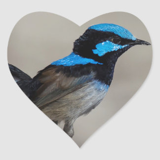 Adesivo Coração vaia birdy birdy
