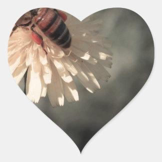 Adesivo Coração Zangão na flor