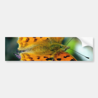 Adesivo De Para-choque Borboleta amarela macro