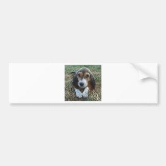 Adesivo De Para-choque Cão de filhote de cachorro de Artésien Normand do