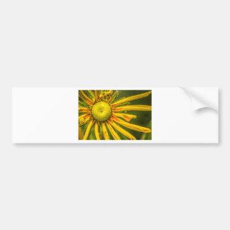 Adesivo De Para-choque Flor