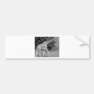 Adesivo De Para-choque girafa