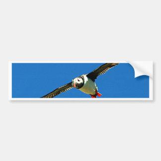 Adesivo De Para-choque Ilhas Ireland do skellig do papagaio-do-mar em vôo